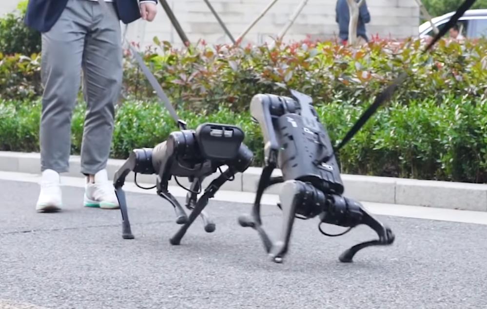 robot dog a1